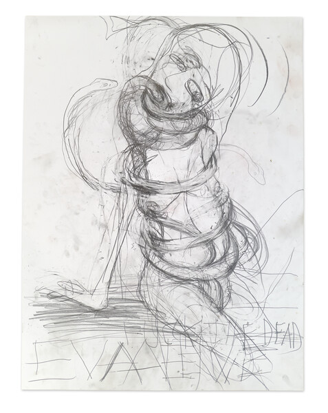Artwork related to exhibition: Paul McCarthy A&E Drawing Session, Santa Anita